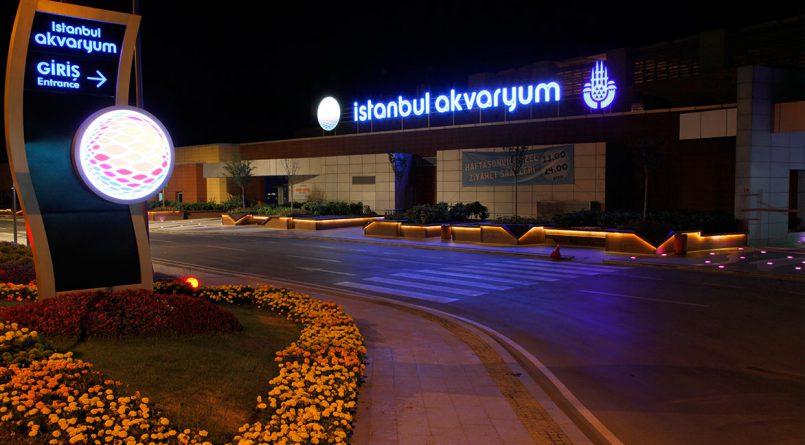 istanbul_akvaryum01